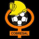 Deportes Cobresal