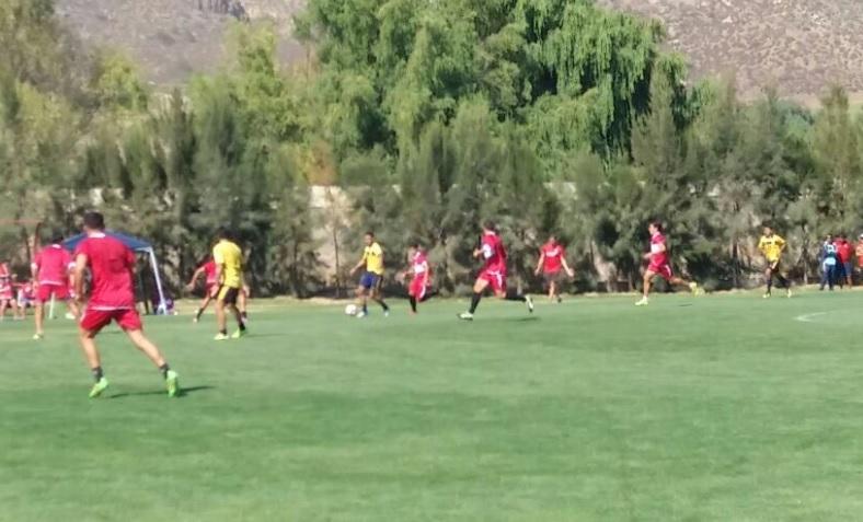 Unión San Felipe busca talentos para sus divisiones menores